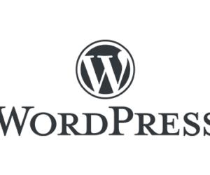 Why We Use WordPress logo - The Xcite Group